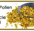 42 Surprising Health Benefits of Bee Pollen Base On True Story
