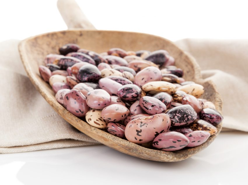 28 Health Benefits of Pinto Beans (#1 Plant Protein Source for Vegetarian)