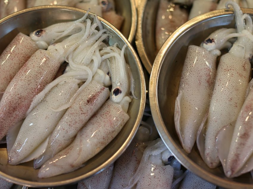 15 Health Benefits of Eating Squid #3 is Awesome