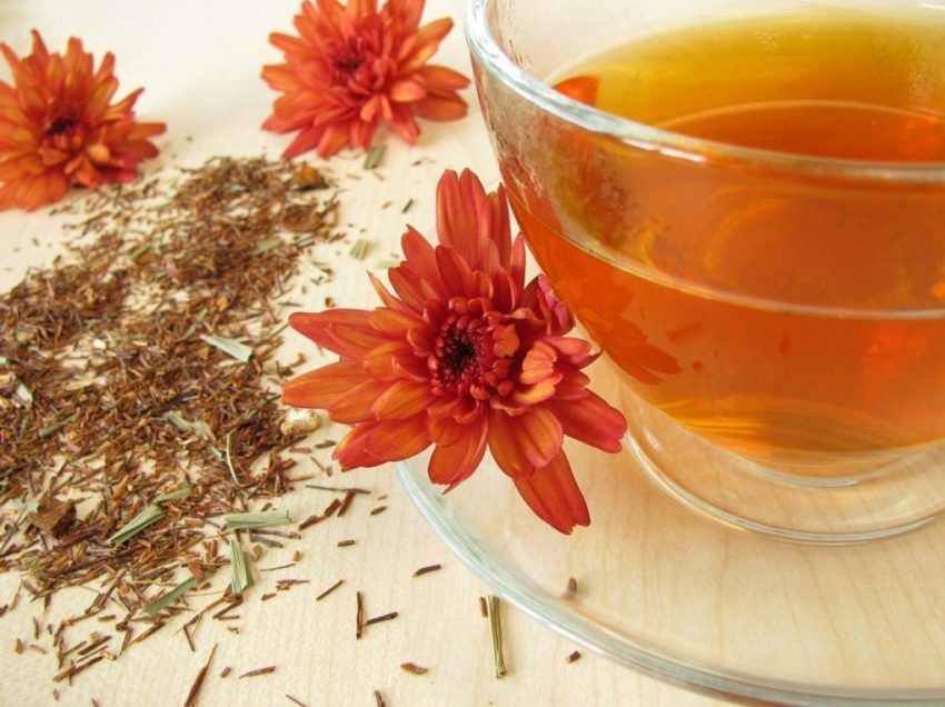 25 Benefits of Rooibos Tea for Health (Amazing Sources)