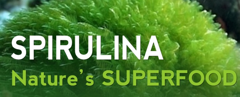 39 Spirulina Benefits For Health & Beauty (No.1-28 Expert research)