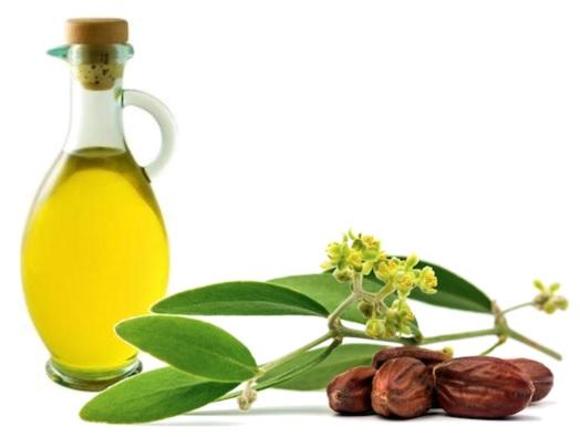 12 Proven Jojoba Oil Benefits for Health and Beauty