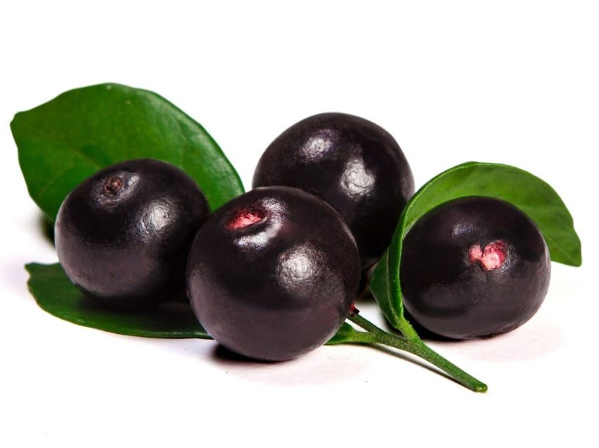 20 Top Health Benefits of Acai Berry – Weight Loss – Skin Treatments