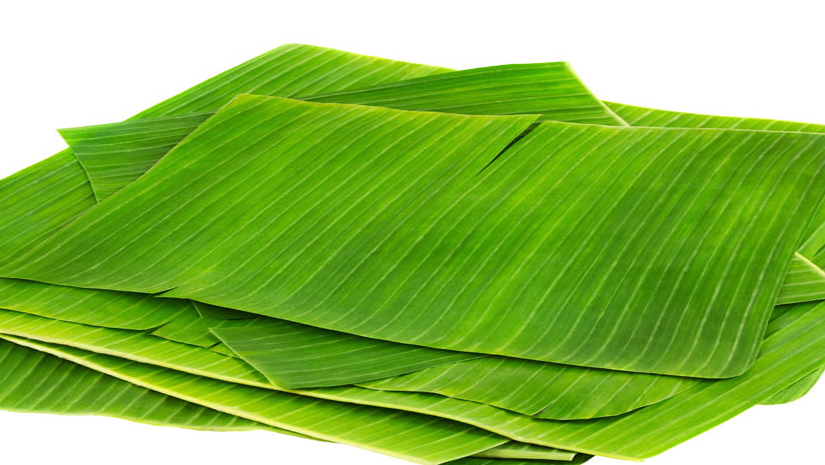 15 Health Benefits of Banana Leaves – Beauty Tricks – Traditional Uses
