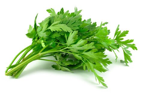 18 Benefits of Parsley for Hair and Skin (#1 Top Homemade Treatments)