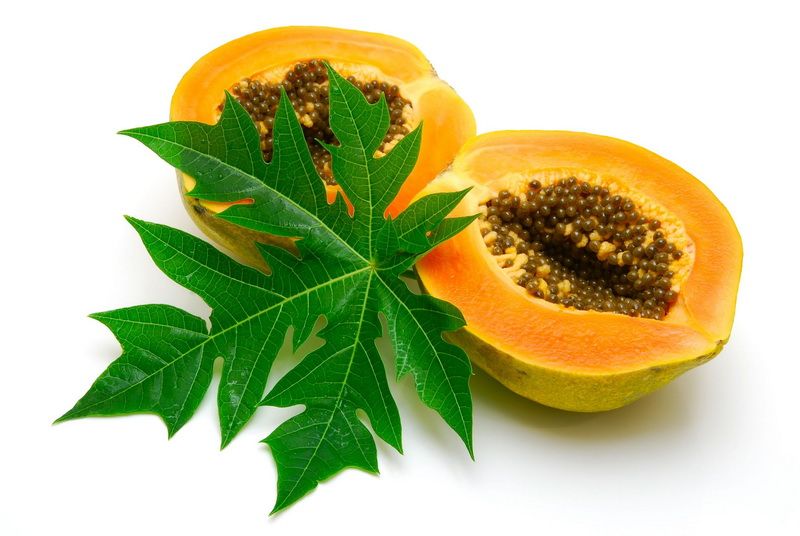 15 Benefits of Papaya Leaves for Dengue and Health