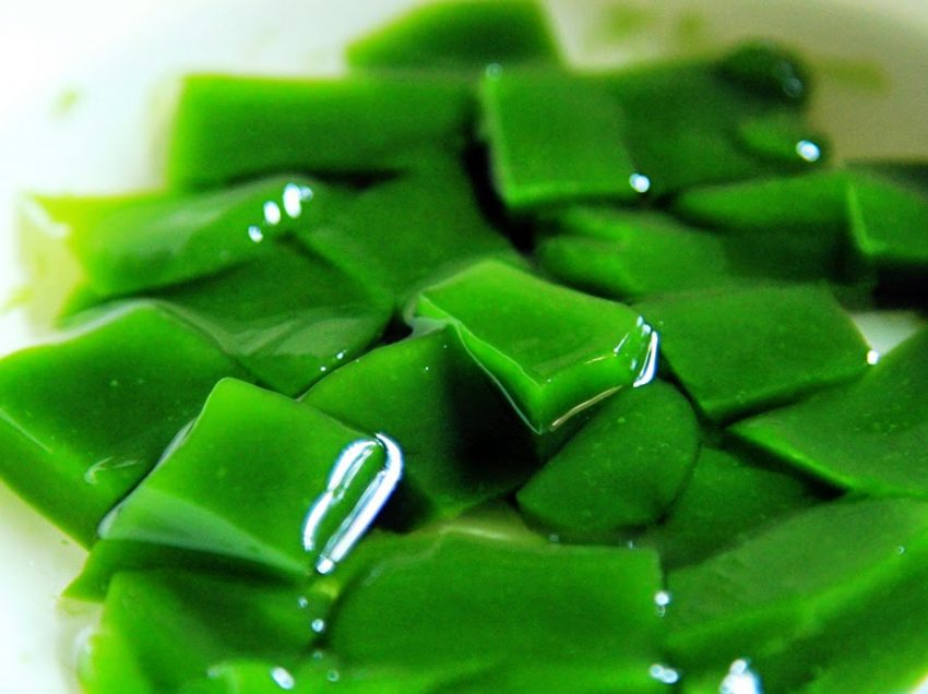 22 Health Benefits of Grass Jelly (#No.4 is Amazing)