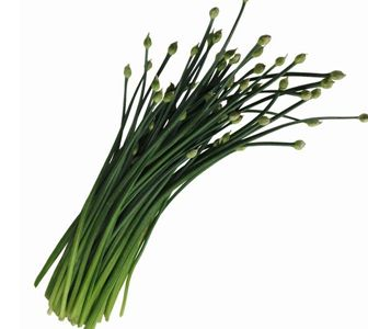 14 Scientific Health Benefits of Chives Leaves #1 Top Nutrients