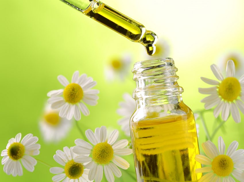 25 Benefits of Daisy Flower Extract for Health and Beauty