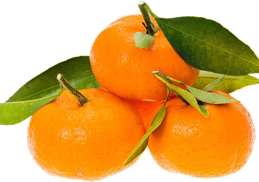 17 Health Benefits of Satsuma Orange #1 Beauty Treatments