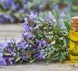 30 Top Health Benefits of Rosemary Essential Oil