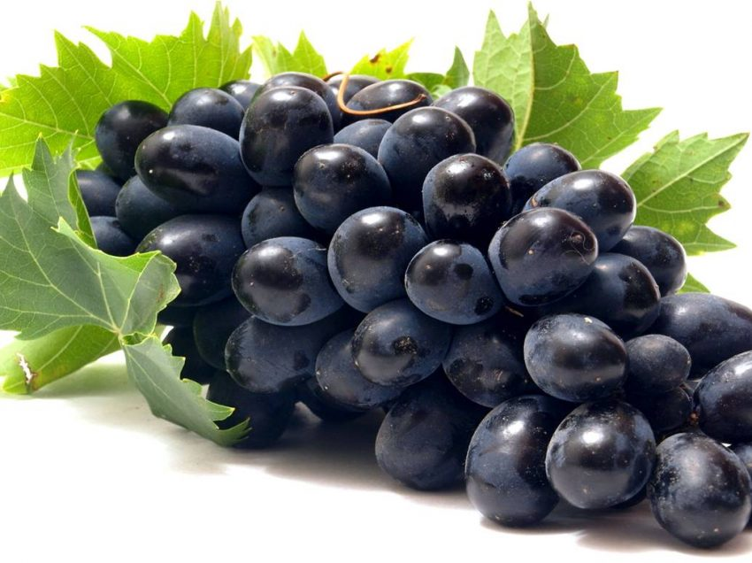 20 Health Benefits of Black Grapes Fruit That You Never Know