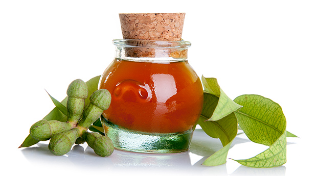 18 Scientific Health Benefits of Eucalyptus Essential Oil