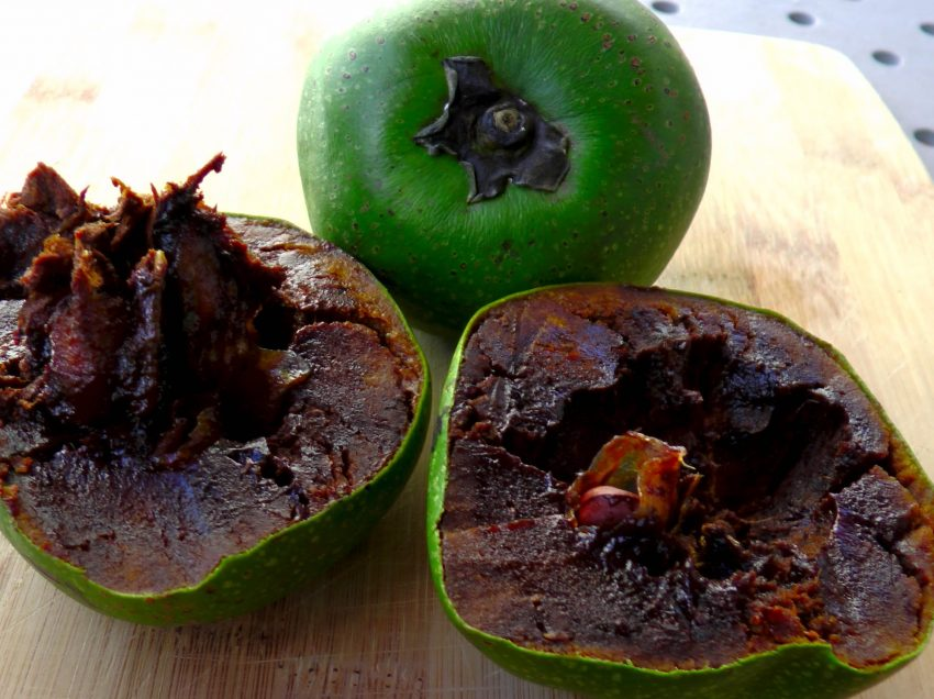 18 Health Benefits of Black Sapote That You Might Not Believe