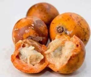 10 Health Benefits of African Star Apple Based on Research