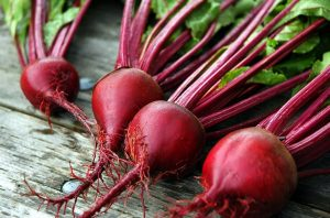 beets for dogs