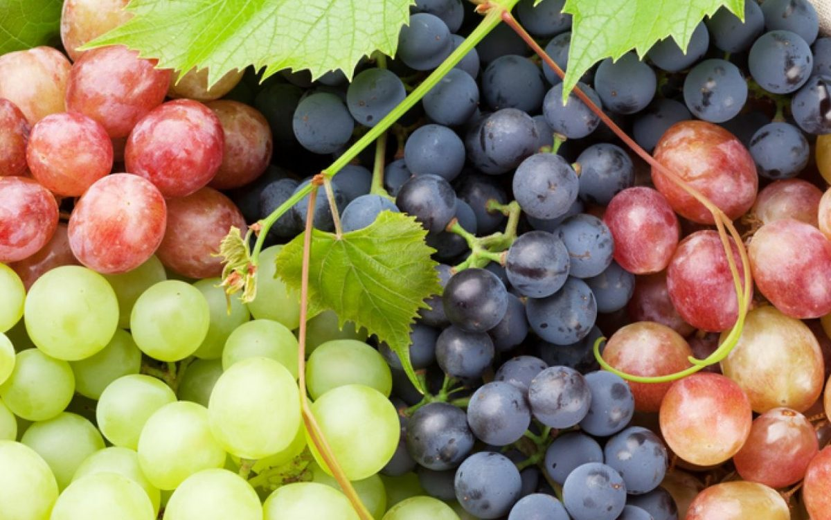 Health Benefits of Grapes for Baby